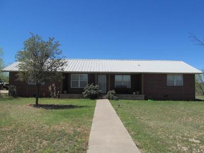 San Angelo Single Family Home For Sale: 11441 White Tail Lane