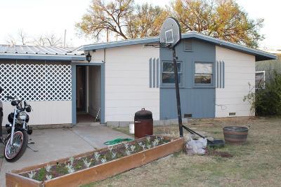Single Family Home For Sale: 210 Oakwood St
