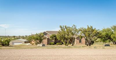 Christoval Single Family Home For Sale: 3030 Venado Dr