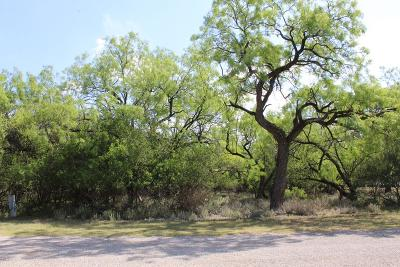 San Angelo Residential Lots & Land For Sale: 9718 Rio Villa Lane