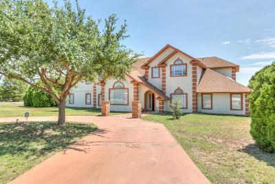 San Angelo Single Family Home For Sale: 284 Edinburgh Rd