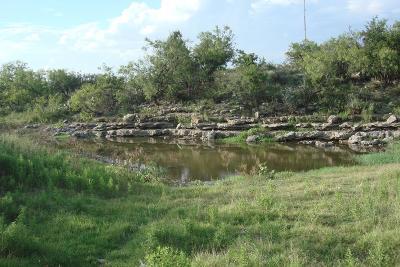 Paint Rock Residential Lots & Land For Sale: 53 Fm 765