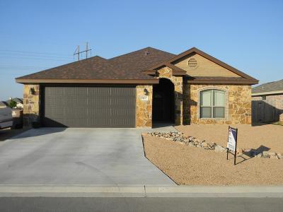 San Angelo Single Family Home For Sale: 2837 Joshua St