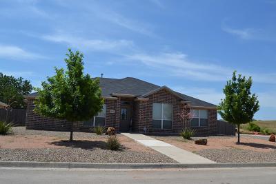 San Angelo Single Family Home For Sale: 4974 Scarlet Oak Lane