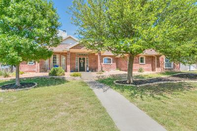 San Angelo Single Family Home For Sale: 705 Avondale Ave