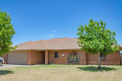 Paulann, Paulann Park, Paulann West Single Family Home For Sale: 1006 Gordon Blvd