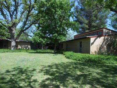 Christoval Single Family Home For Sale: 20178 Toenail Trail