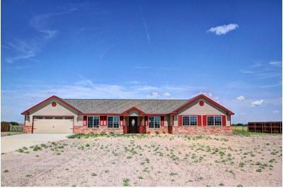 San Angelo Single Family Home For Sale: 791 Fairview School Rd