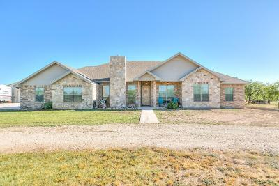 San Angelo Single Family Home For Sale: 2198 White Rock Road