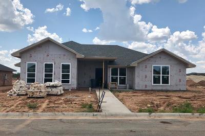 San Angelo Single Family Home For Sale: 4113 Huntleigh Dr