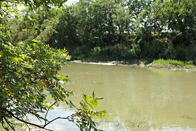 Dove Creek Single Family Home For Sale: 11014 Twin Lakes Lane