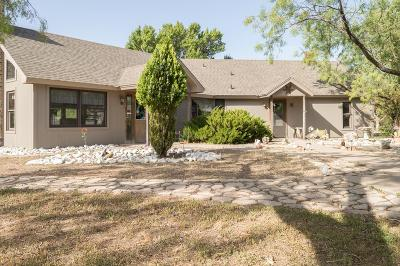 San Angelo Single Family Home For Sale: 12433 Dove Creek Lane West