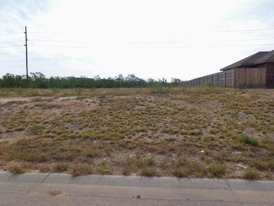 San Angelo Residential Lots & Land For Sale: 4130 Goodnight Trail