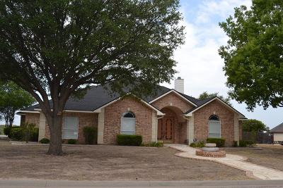 San Angelo Single Family Home For Sale: 1001 Avondale Ave