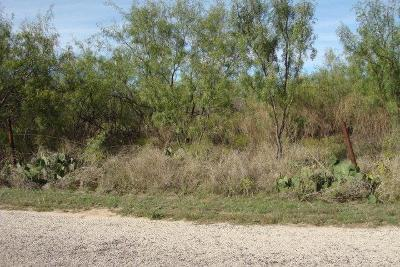 San Angelo Residential Lots & Land For Sale: 226 Clover Dr