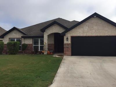 San Angelo Single Family Home For Sale: 3938 Blair Ln