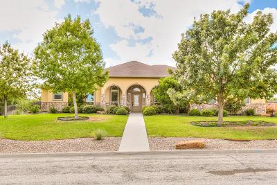San Angelo TX Single Family Home For Sale: $350,000