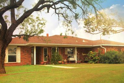 San Angelo Single Family Home For Sale: 856 E 47th St