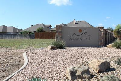 San Angelo Residential Lots & Land For Sale: 6102 Sammye Lane