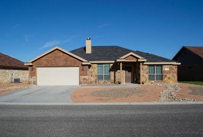 San Angelo Single Family Home For Sale: 1218 Daniel St