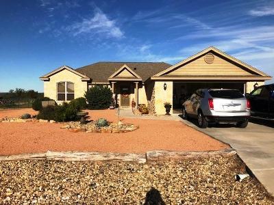 San Angelo Single Family Home For Sale: 7650 Elk Run