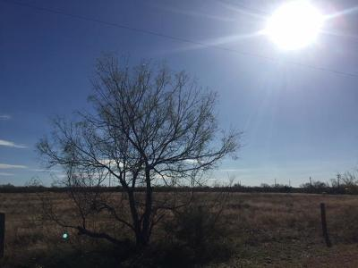 San Angelo Residential Lots & Land For Sale: 11002 Paisano Lane