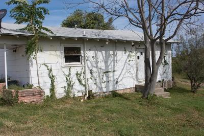 San Angelo Single Family Home For Sale: 802 N Adams St