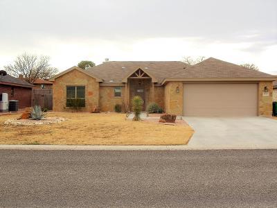 Single Family Home For Sale: 1213 Daniel St
