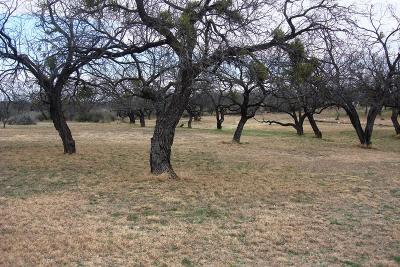 San Angelo Residential Lots & Land For Sale: 144 Edinburgh Rd
