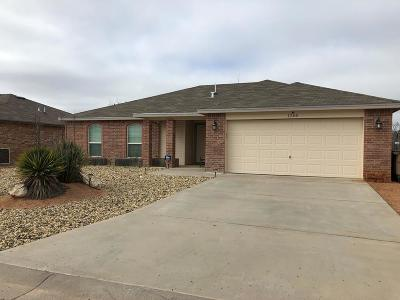San Angelo Single Family Home For Sale: 1205 Elmo Lane
