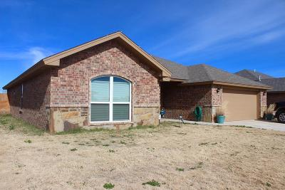 San Angelo TX Single Family Home For Sale: $230,000