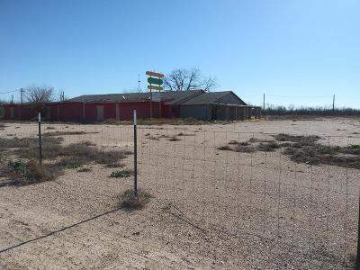 San Angelo Residential Lots & Land For Sale: 3927 Old Ballinger Hwy