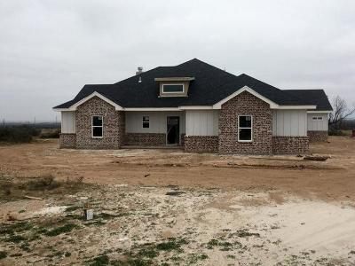 San Angelo Single Family Home For Sale: 8693 Kna Dr.