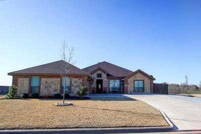 San Angelo Single Family Home For Sale: 2013 Overhill Dr