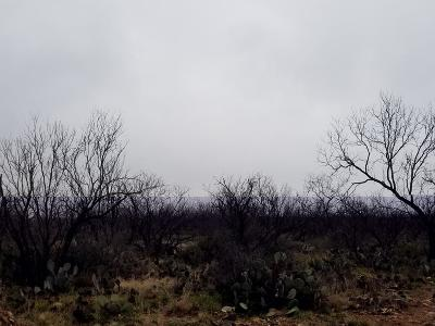 San Angelo Residential Lots & Land For Sale: 4547 Grey Wolf Lane