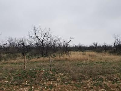 San Angelo Residential Lots & Land For Sale: 4607 Grey Wolf Lane