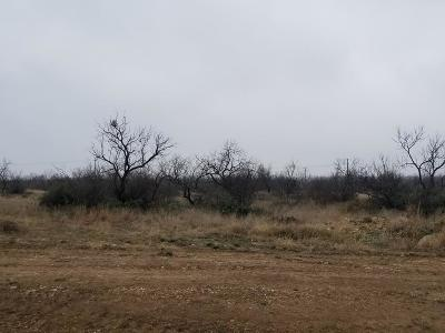 San Angelo Residential Lots & Land For Sale: 4638 Grey Wolf Lane