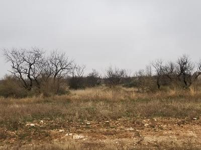 San Angelo Residential Lots & Land For Sale: 4651 Grey Wolf Lane
