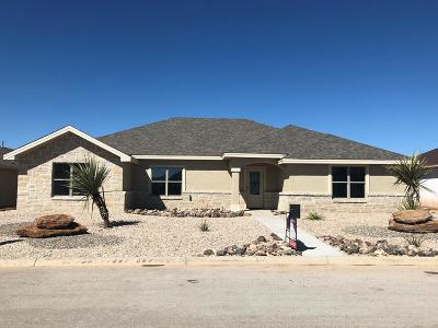 San Angelo Single Family Home For Sale: 4153 Kensington Creek
