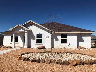 San Angelo Single Family Home For Sale: 4149 Kensington Creek