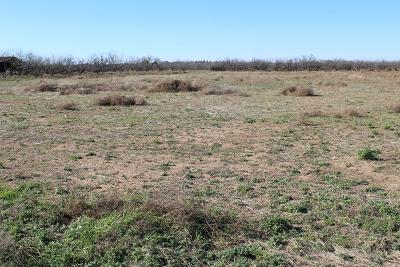 San Angelo Residential Lots & Land For Sale: 2830 Country Club Rd
