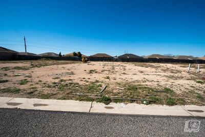 San Angelo Residential Lots & Land For Sale: 2821 Joshua St