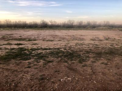 San Angelo Residential Lots & Land For Sale: 3528 Badger Ct