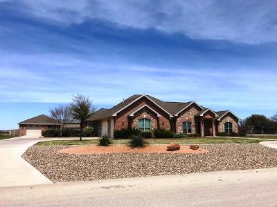 San Angelo Single Family Home For Sale: 1602 Stonelake Dr