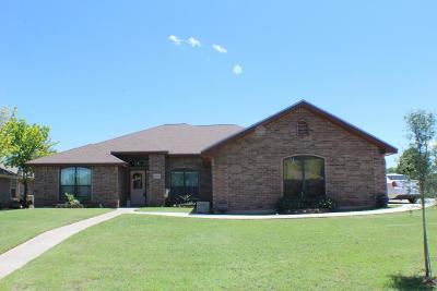 San Angelo Single Family Home For Sale: 6005 Stratford Ave