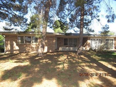 San Angelo Single Family Home For Sale: 1905 Jade Dr
