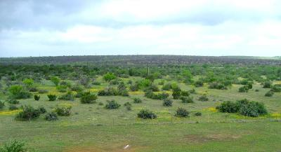 San Angelo Residential Lots & Land For Sale: 14778 S Hwy 277