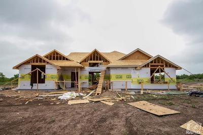 Christoval Single Family Home For Sale: 9213 Remuda Lane