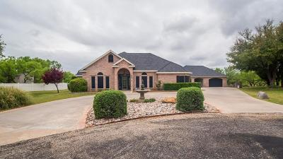 San Angelo Single Family Home For Sale: 6572 Spy Glass Dr