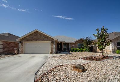 San Angelo Single Family Home For Sale: 21 Tracie Trl